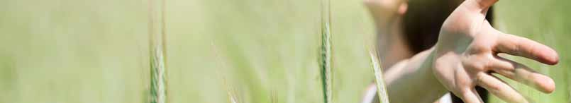 Imagen de cabecera de la sección de medicamentos de Tónicos y estimulantes